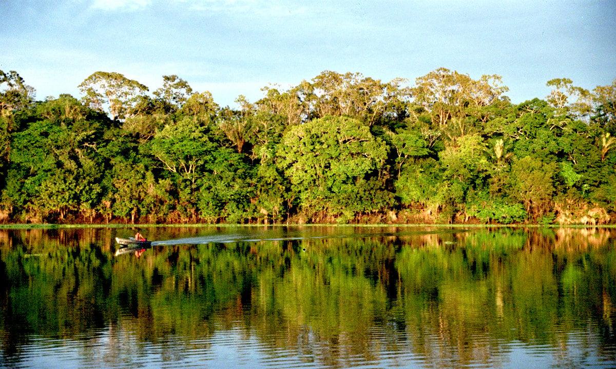 Amazônia (Foto: Divulgação)