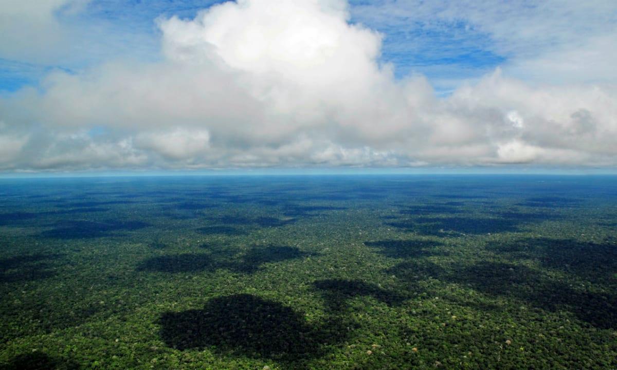vista aérea próxima de Manaus (wikipedia)