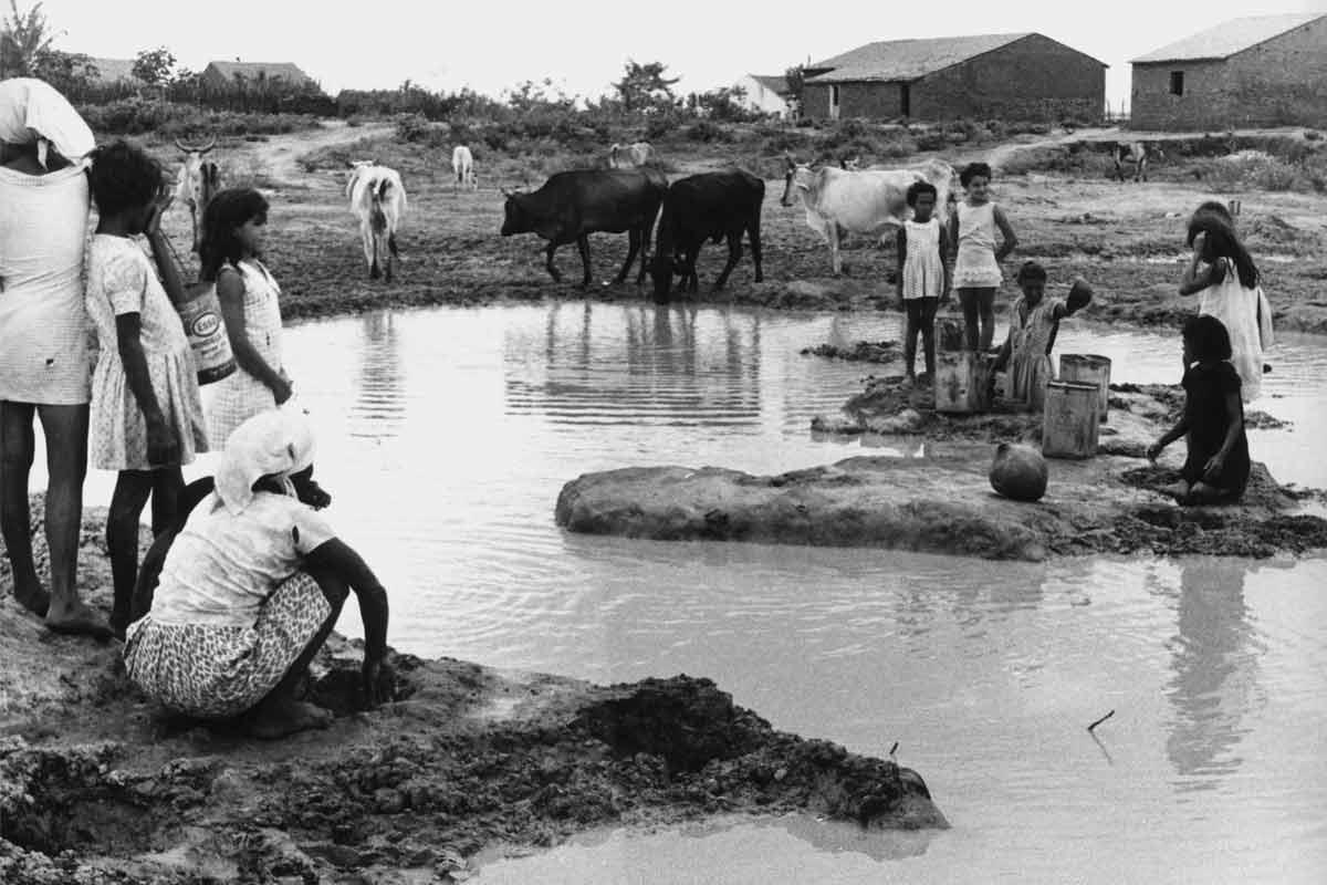Ausência de saneamento básico