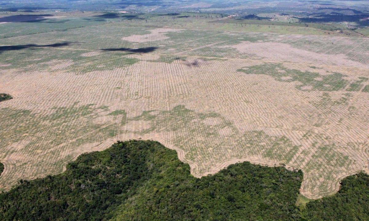 Diplomacia ambiental brasileira está em risco real de extinção