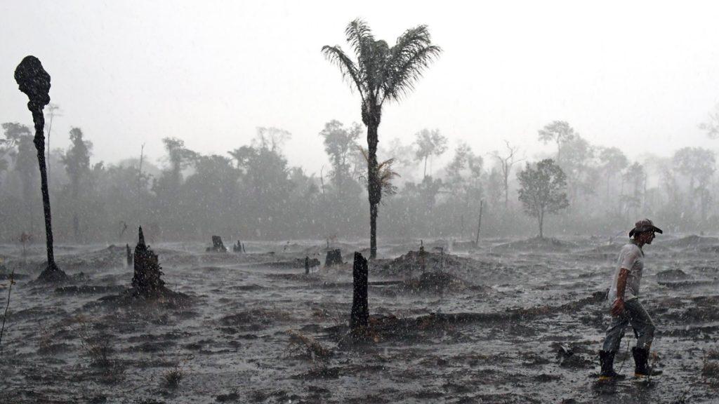 Área de queimada em Porto Velho, Rondönia. (Foto: Carl De Souza/AFP)