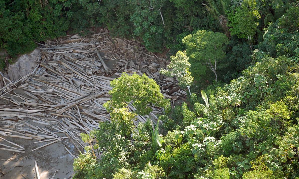 Desmatamento na Amazônia. Foto: Arquivo/Agência Brasil