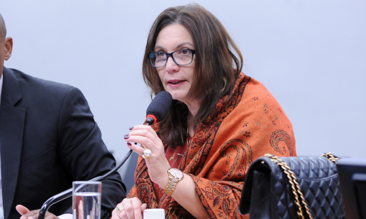 A deputada Bia Kicis (PSL-DF). Foto: Cleia Viana/Câmara dos Deputados