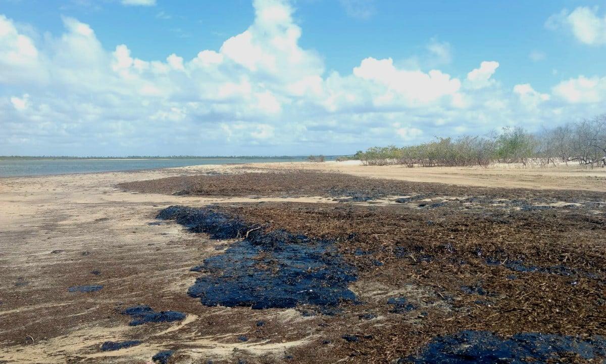 Mancha de óleo em praia do litoral sergipano / Foto: Governo de Sergipe
