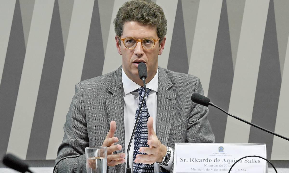 Salles é alvo de abaixo-assinado na internet (Foto: Roque de Sá/Agência Senado)