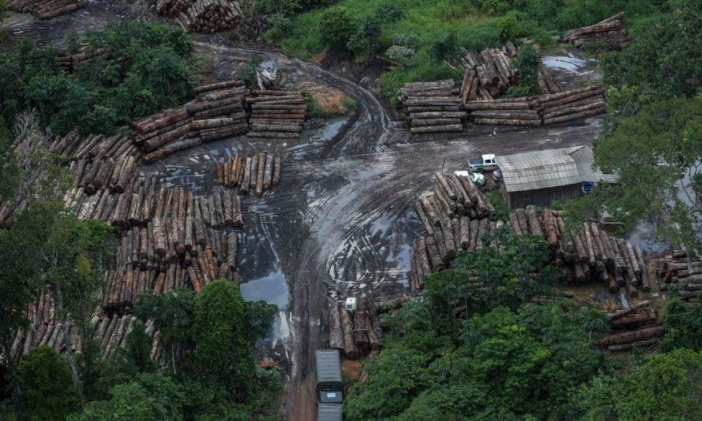 Desmatamento na Amazônia atinge maior taxa em 12 anos, mostra Inpe - CartaCapital