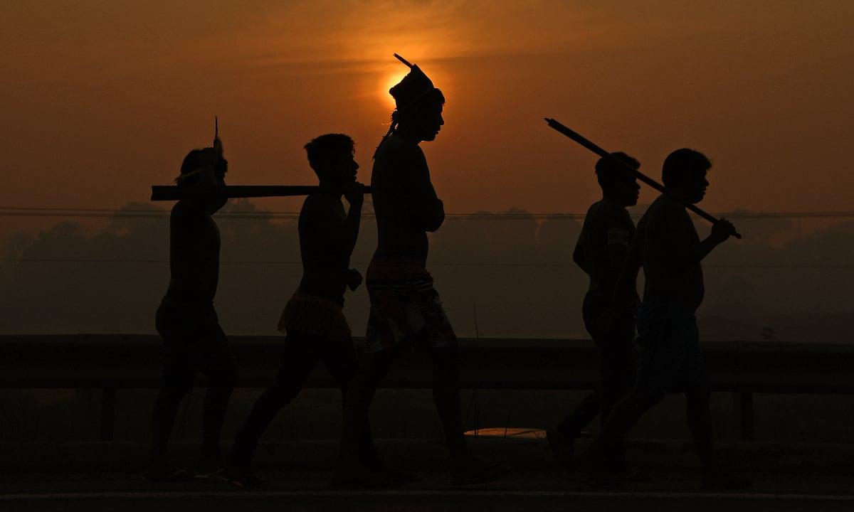 Indigenista é morto por flechada em tribo isolada da Amazônia. Foto: AFP.