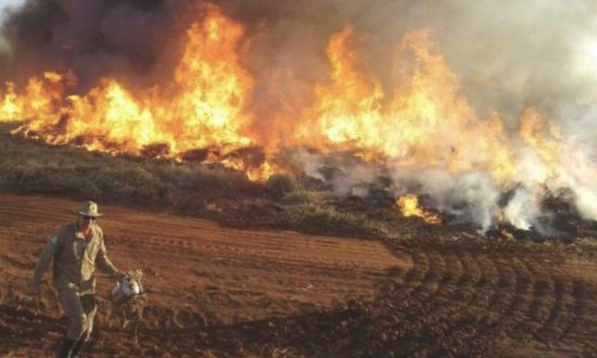 Abaixo-assinado cobra ação dos governos sobre incêndios no Pantanal -  CartaCapital