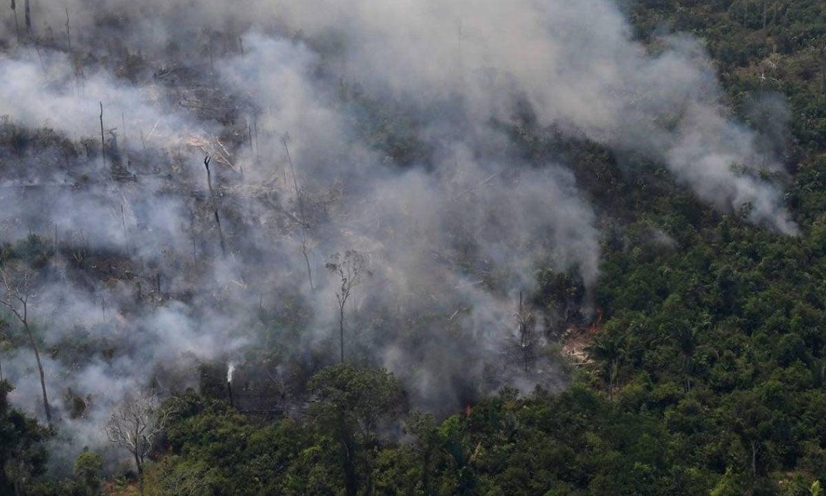 CERCA DE 40% DA FLORESTA AMAZÔNICA PODE VIRAR SAVANA, DIZ ESTUDO. FOTO: CARL DE SOUZA / AFP