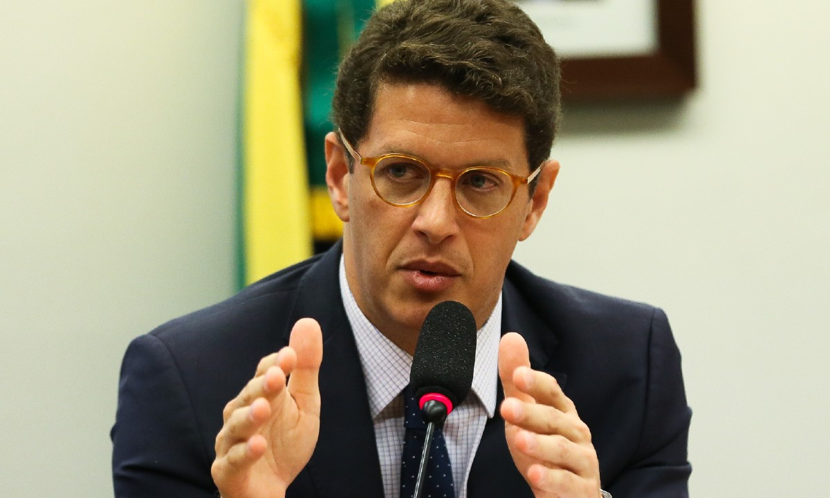 Ministro do Meio Ambiente, Ricardo Salles (Foto: José Cruz/Agência Brasil)