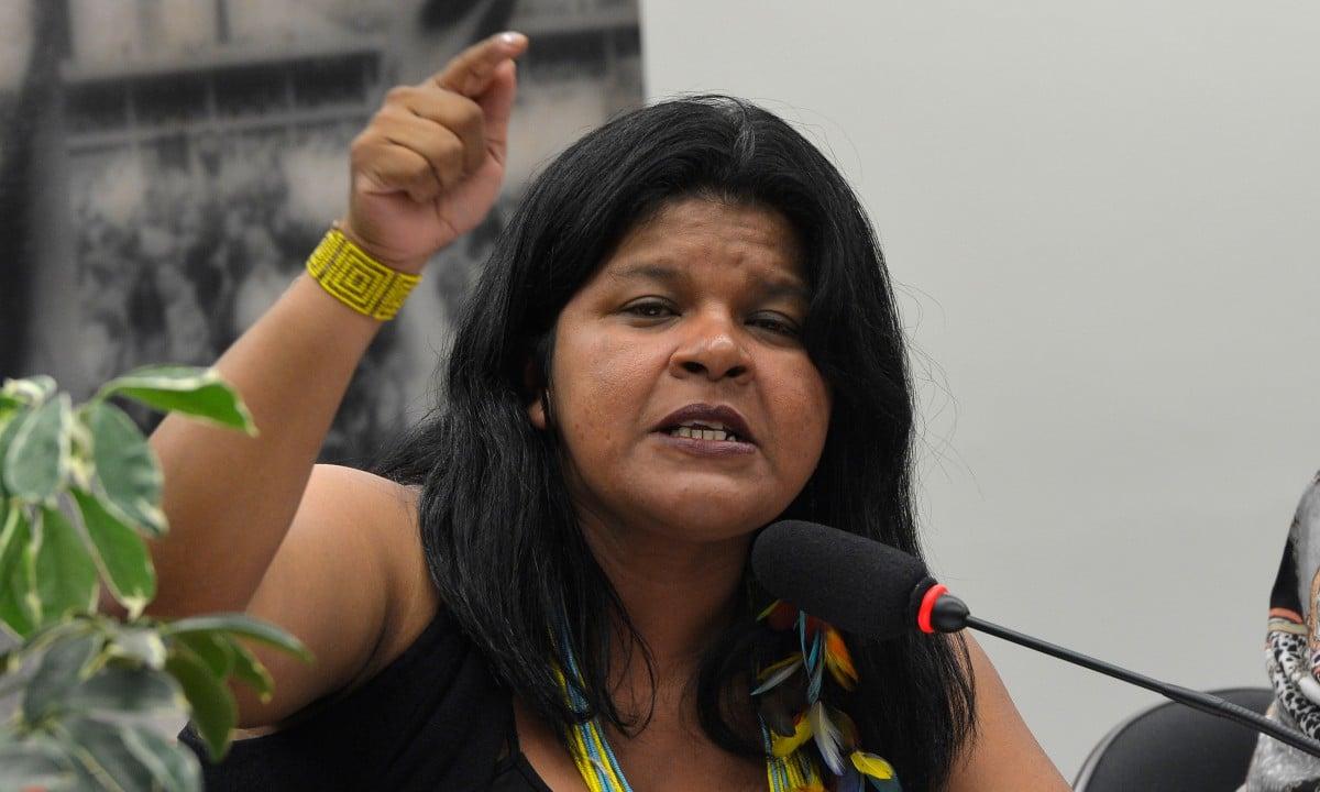 A Coordenadora da Articulação dos Povos Indígenas do Brasil, Sônia Guajajara (Wilson Dias/Agência Brasil)
