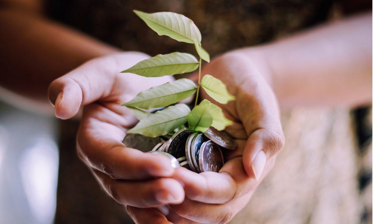 Os os bancos centrais levam em conta os riscos que a devastação ambiental e as mudanças climáticas impõem sobre a política monetária e a estabilidade do sistema financeiro (Foto: iStock)